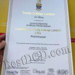 TCL fake diploma